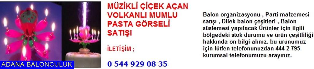 Adana Müzikli çiçek açan volkanlı mumlu pasta görseli iletişim ; 444 0 209 ve 444 2 795