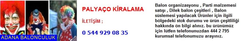 Adana Palyaço kiralama iletişim ; 444 0 209 ve 444 2 795