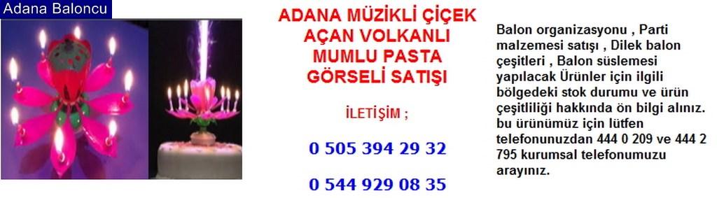 Adana müzikli çiçek açan volkanlı mumlu pasta görseli satışı iletişim ; 0 544 929 08 35